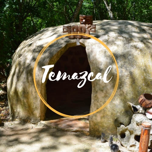 Experience the Ancestras Steam house Temazcal
